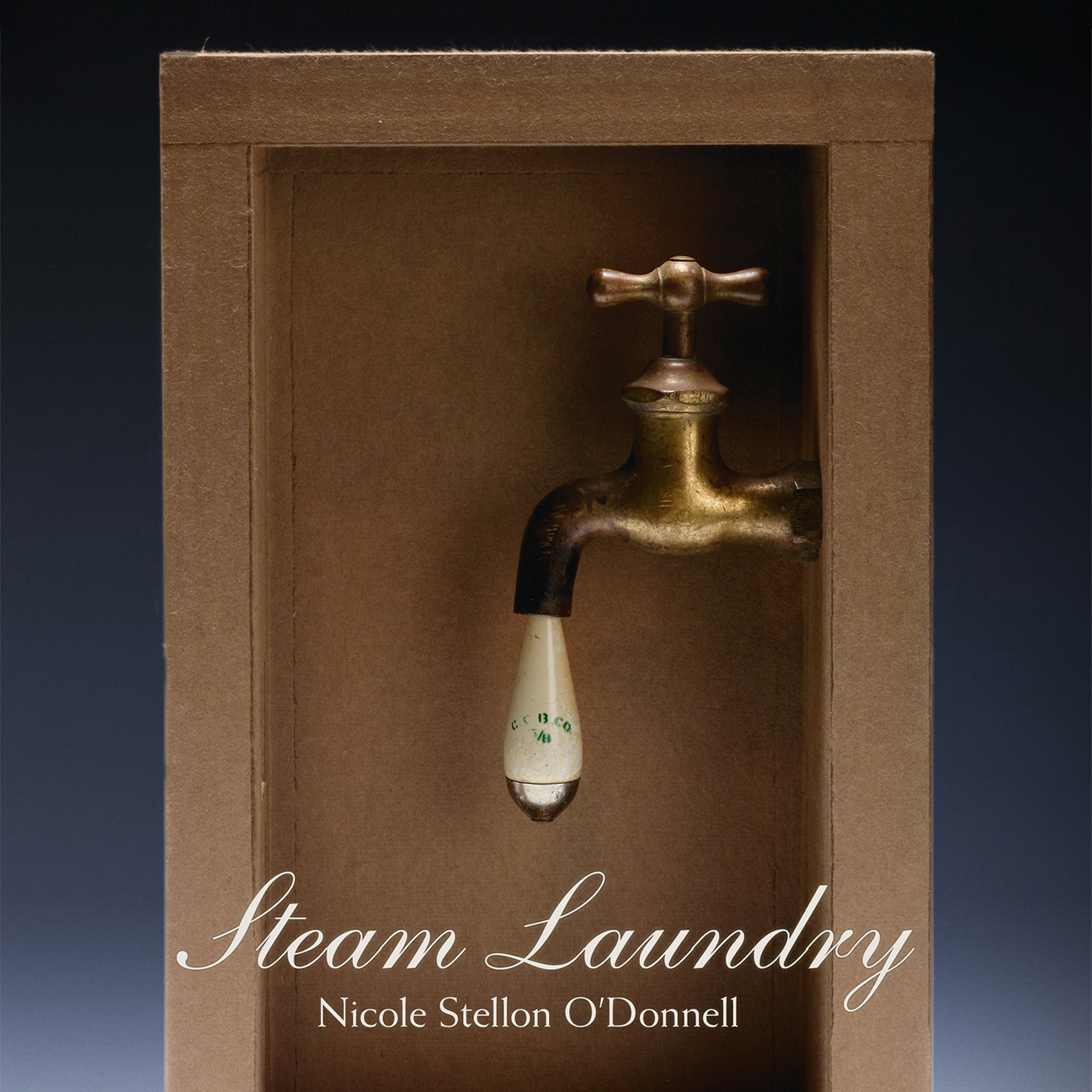 An image of the cover of Nicole Stellon O'Donnell's Steam Laundry